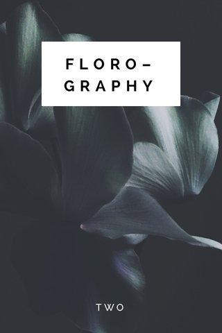FLORO–GRAPHY TWO