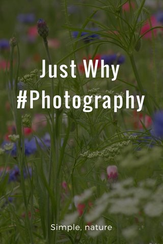 Just Why #Photography Simple, nature