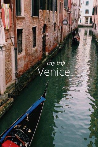Venice city trip
