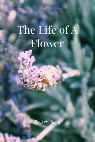 The Life of A Flower By Arly Scott