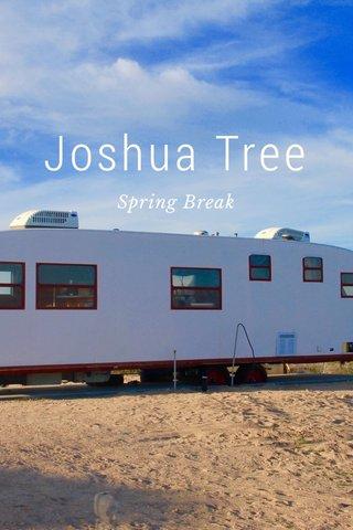 Joshua Tree Spring Break