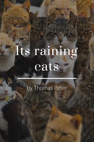 Its raining cats by Thomas Peter