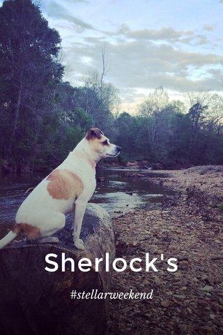 Sherlock's #stellarweekend