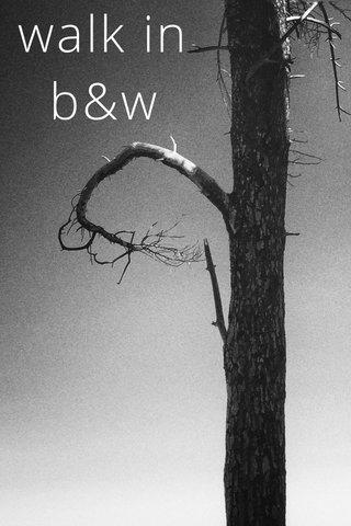 walk in b&w