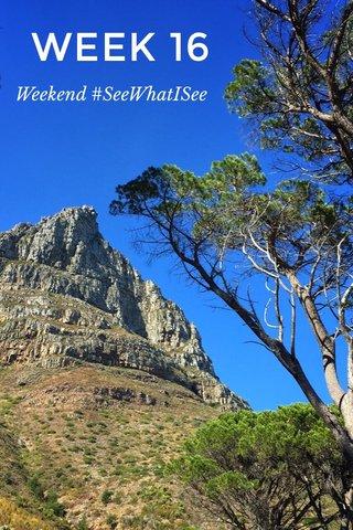 WEEK 16 Weekend #SeeWhatISee