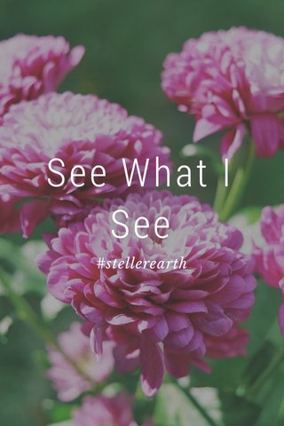 See What I See #stellerearth