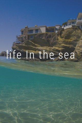 life In the sea Jordan Stempson Photo