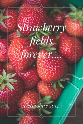 Strawberry fields forever.... | Derbyshire 2014 |