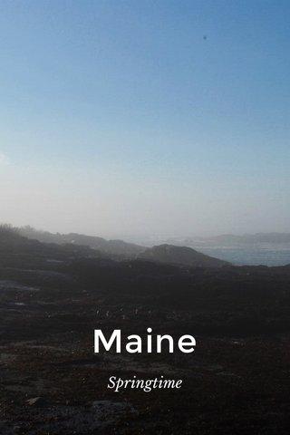 Maine Springtime