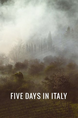 FIVE DAYS IN ITALY