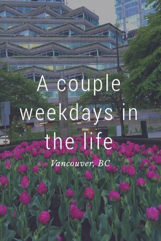 A couple weekdays in the life Vancouver, BC