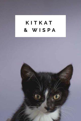 KITKAT & WISPA