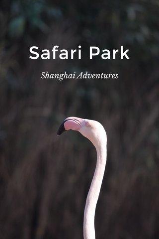 Safari Park Shanghai Adventures
