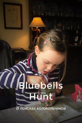 Bluebells Hunt В поисках колокольчиков