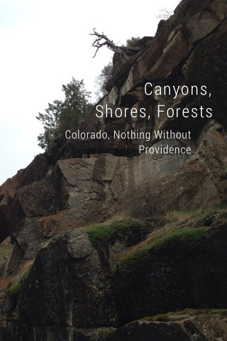 Canyons, Shores, Forests Colorado, Nothing Without Providence
