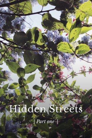 Hidden Streets | Part one |