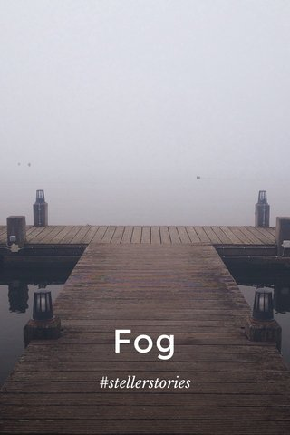 Fog #stellerstories