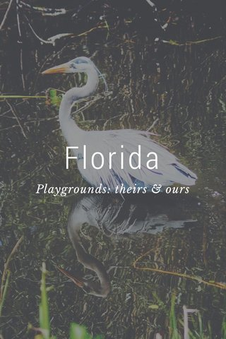 Florida Playgrounds: theirs & ours