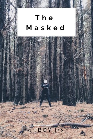 The Masked <•|BOY |•>