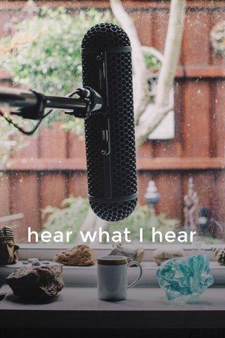 hear what I hear