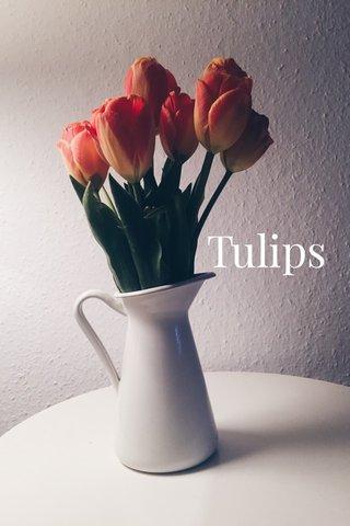 Tulips | subtitle |