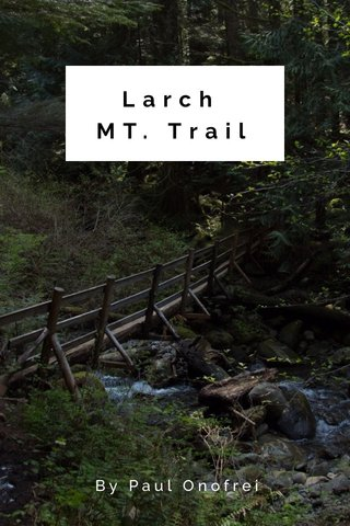 Larch MT. Trail By Paul Onofrei