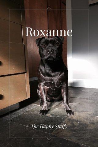 Roxanne The Happy Staffy