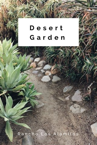 Desert Garden Rancho Los Alamitos