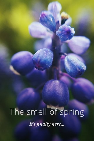 The smell of spring It's finally here...