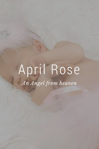 April Rose An Angel from heaven