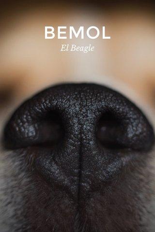 BEMOL El Beagle