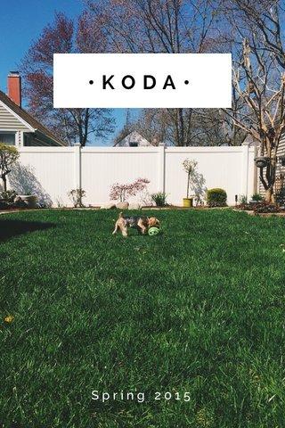 •KODA• Spring 2015