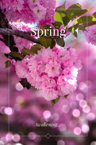 Spring Awakening...