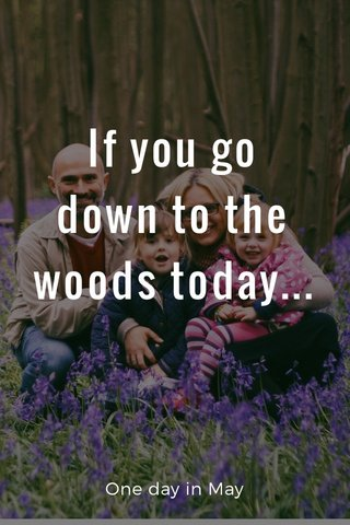 If you go down to the woods today... One day in May