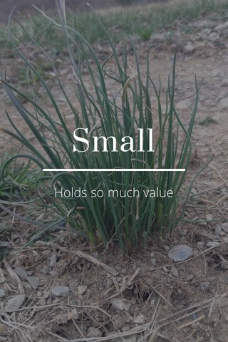 Small Holds so much value