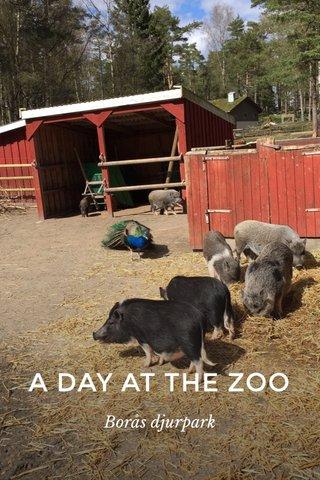 A DAY AT THE ZOO Borås djurpark