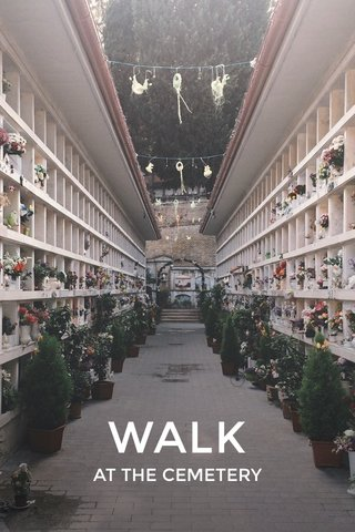 WALK AT THE CEMETERY