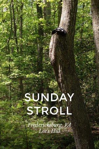 SUNDAY STROLL Fredericksburg, VA Lee's Hill
