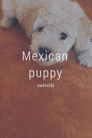 Mexican puppy subtitle
