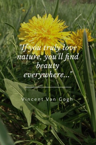 """""""If you truly love nature, you'll find beauty everywhere..."""" Vincent Van Gogh"""
