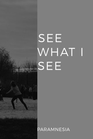 SEE WHAT I SEE PARAMNESIA