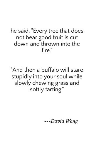 """he said, """"Every tree that does not bear good fruit is cut down and thrown into the fire."""" """"And then a buffalo will stare stupidly into your soul while slowly chewing grass and softly farting."""" ---David Wong"""