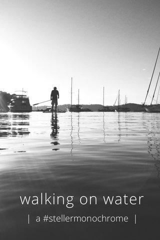 walking on water | a #stellermonochrome |