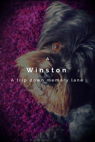 Winston A trip down memory lane