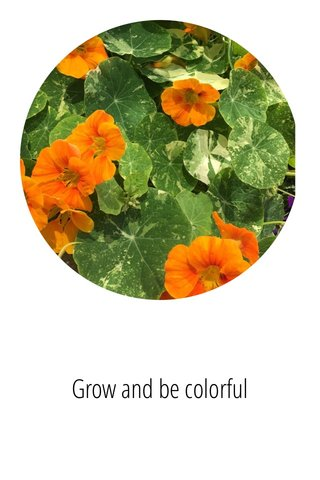 Grow and be colorful
