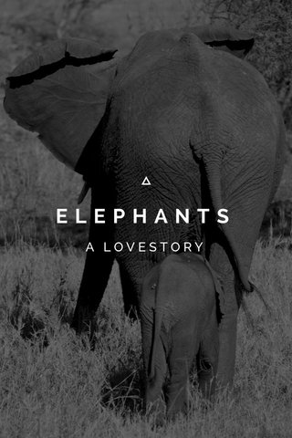 ELEPHANTS A LOVESTORY