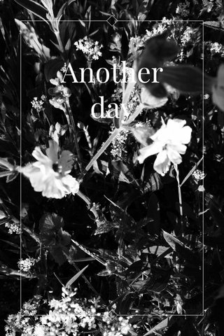 Another day   subtitle  