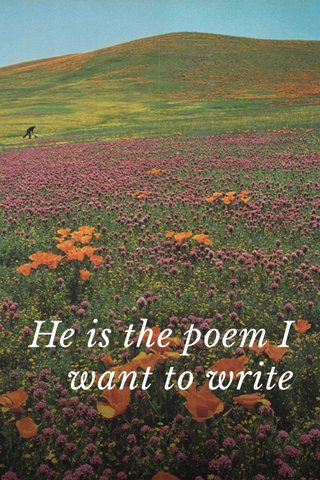 He is the poem I want to write