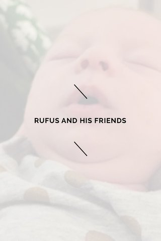 RUFUS AND HIS FRIENDS