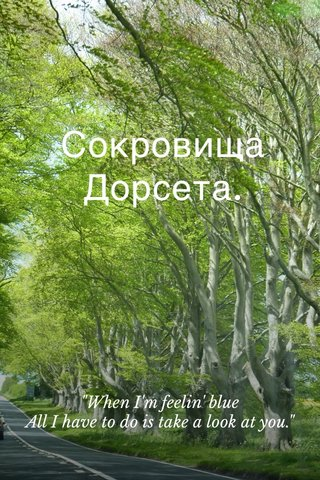"""Сокровища Дорсета. """"When I'm feelin' blue All I have to do is take a look at you."""""""
